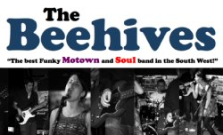 The Beehives, Bristol/bath